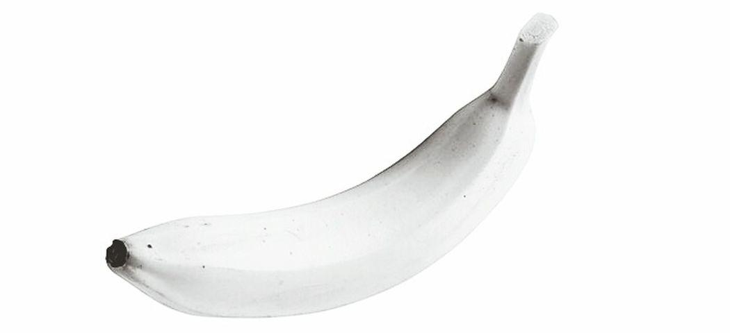 Penislove Penisislife