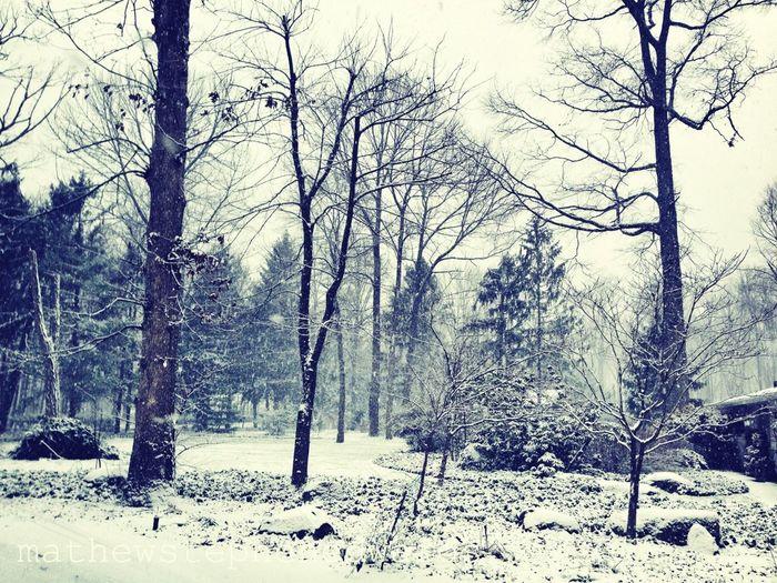 It's Snowing !