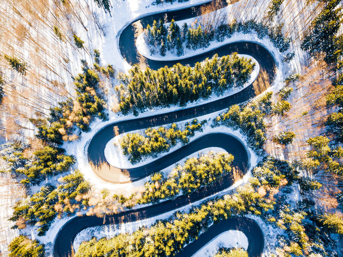 Aerial view of road amidst tree during winter
