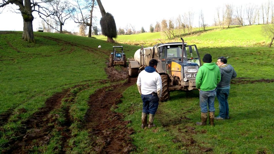 Field Agriculture Farm Adult Rural Scene Nature Farmer Outdoors Lifestyles People Working Day Volunteer Tractor Agriculture Tractor Love Tractor Tracks Nature