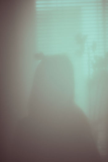 Rear view of silhouette man standing against window