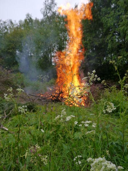 Bonfire Burning Wood Fire Juhannus Midsummer Midsummer Pyre Nature Tradition