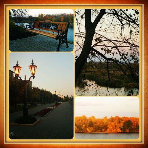 Осеньпечальная неизбежность Autumn не смогла удержаться пожелать всем спокойной ночи!