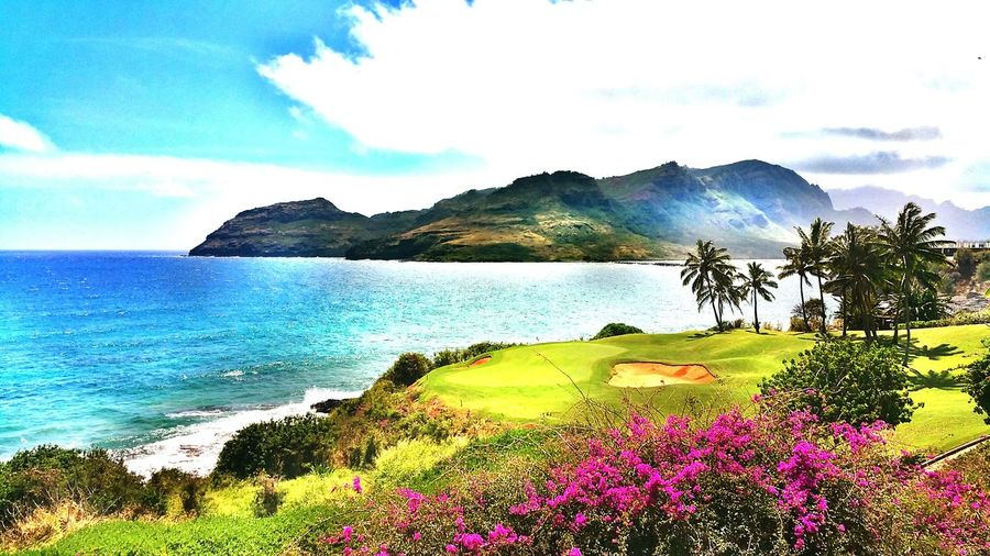Golf in paradise Bright Ocean Harbor Mountains OpenEdit Summer Hawaii Color Of Life Scenery Shots Check This Out Coconut Trees Beautiful Day Mountain Kauai♡