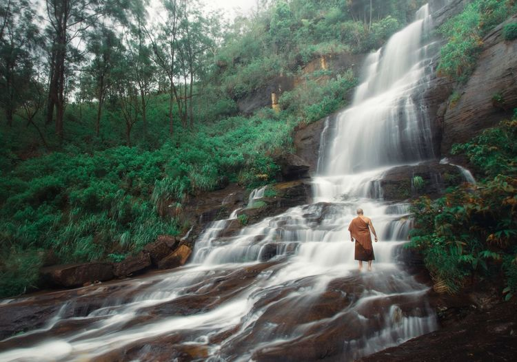 Rear view of monk standing at waterfall in forest