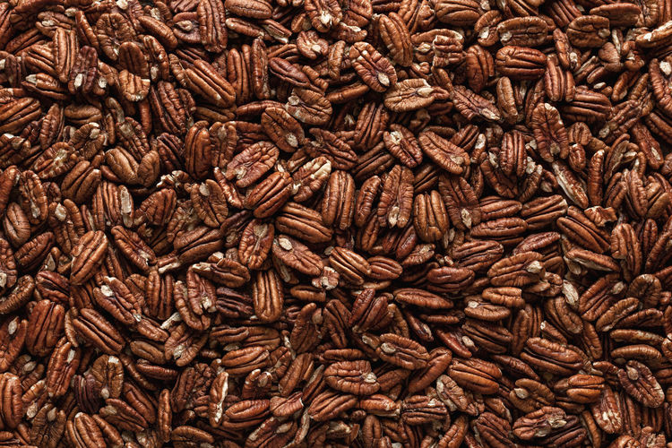 Pile of pecans, full-frame image, directly above. pecan nuts background. multitude of mexican nuts.