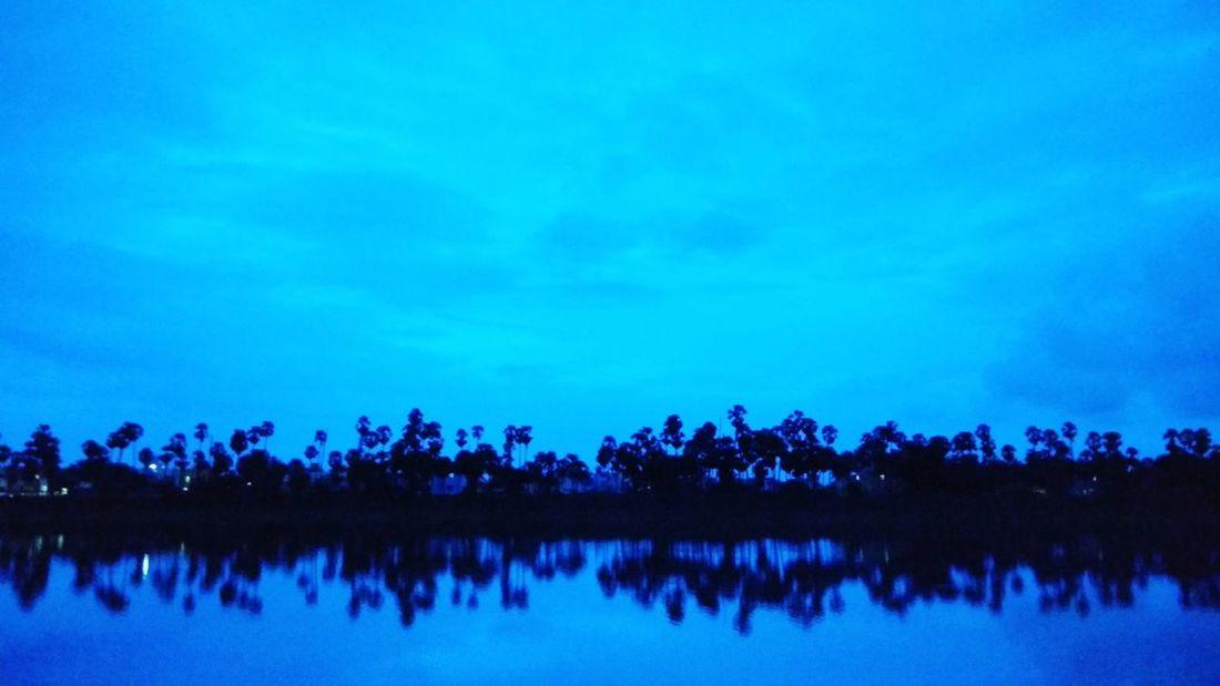 Reflection Tree Lake Sky Blue Night Scenics EyeEm Ready   EyeEmNewHere