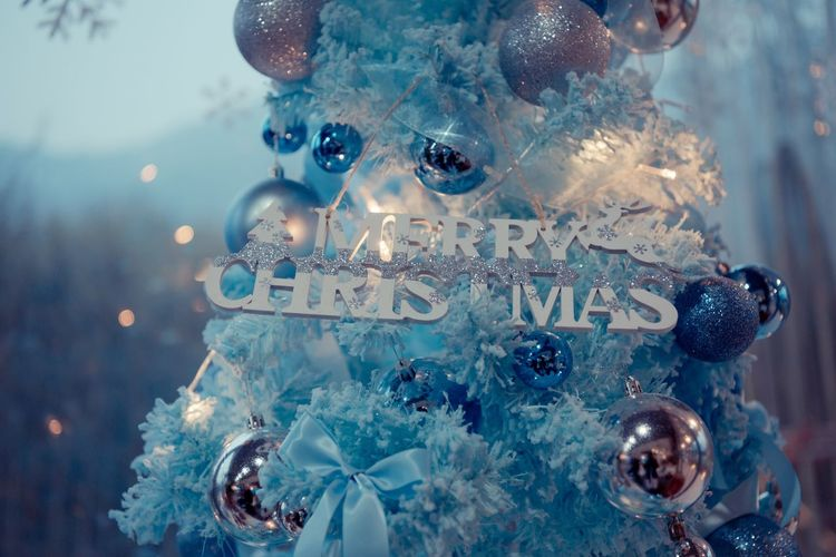 Close-up Christmas Decoration Indoors  Christmas No People Christmas Ornament Decoration Blue Still Life christmas tree Holiday