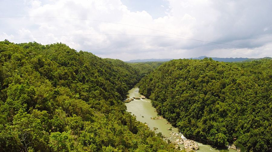 High Angle View Of River Amidst Trees Against Cloudy Sky