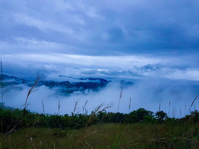 Mt. Batolusong First Eyeem Photo
