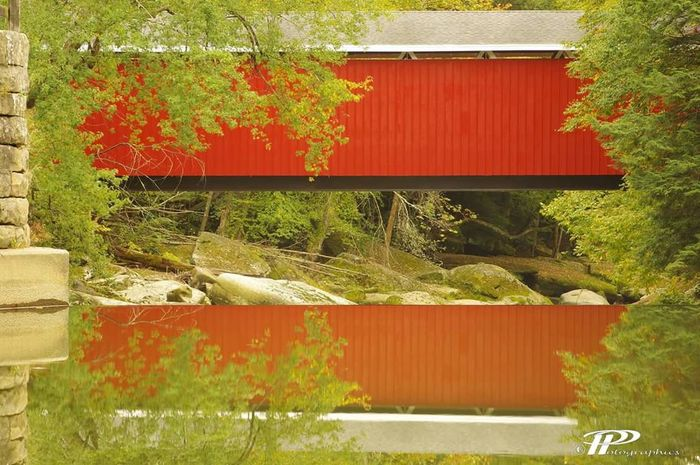 Covered Bridge Bridge - Man Made Structure Bridge Over Water Red Green Color Vibrant Color Plant Day Outdoors Retail  No People Large Group Of Objects Uncultivated