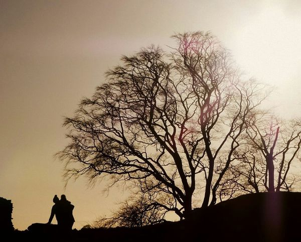 Tree Sunset Silhouette Man Child Parental Love Taking In The Beautiful Scenery Low Angle View Beauty In Nature Branch Sky Scenics Sepia Sunset Silhouettes Sunbeam Sunrays Watermark Design Winter Cold Temperature Bobble Hat