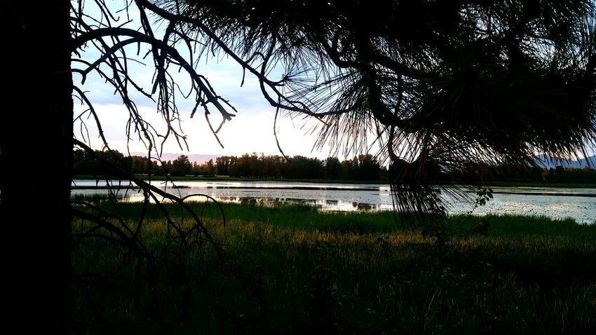 Sunset Taking Photos Hello World Photography Montana Nature Moon Light Dawn Of A New Day Kalispell Montana