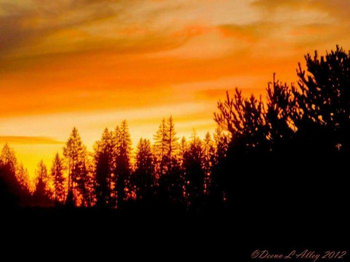 Union Washington Colorful Sunset Washington