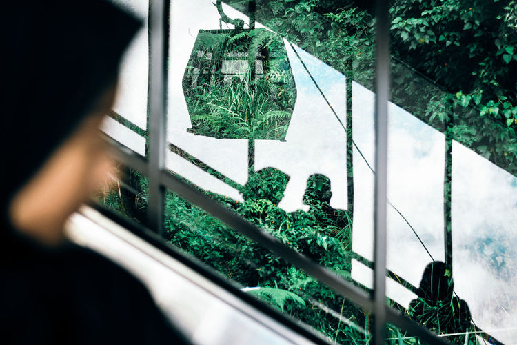 Street Transparent Glass - Material Nature Growth Window Selective Focus Portrait Reflection Cable Car Escalators Silhouette Abstract People Travel Nature Indoors  Growth Green Color Looking