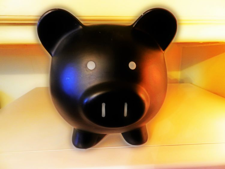 Mr. Piggy Bank Animal Head  Bank Black Black And White Blue Ceramic Close-up Collection Cute Ears Empty Light Reflection No People Nose Oink Pig Pig Face Pig Nose Pig Nose ^.^ Piggy Bank Piggy Banks Savings Selective Focus Statue Still Life
