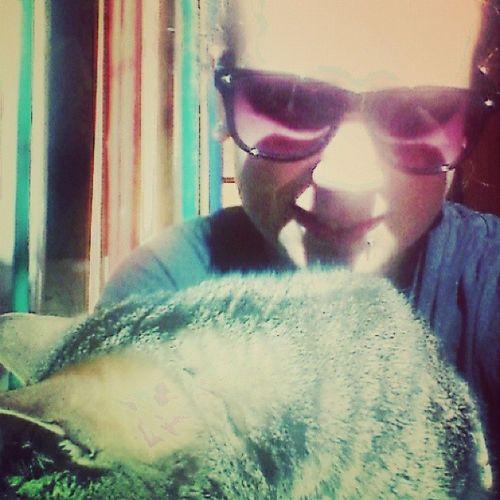 Moj Kot Antosia Nie lubizgjećpolishgirlpolishcatphototheentitledforeverpeace