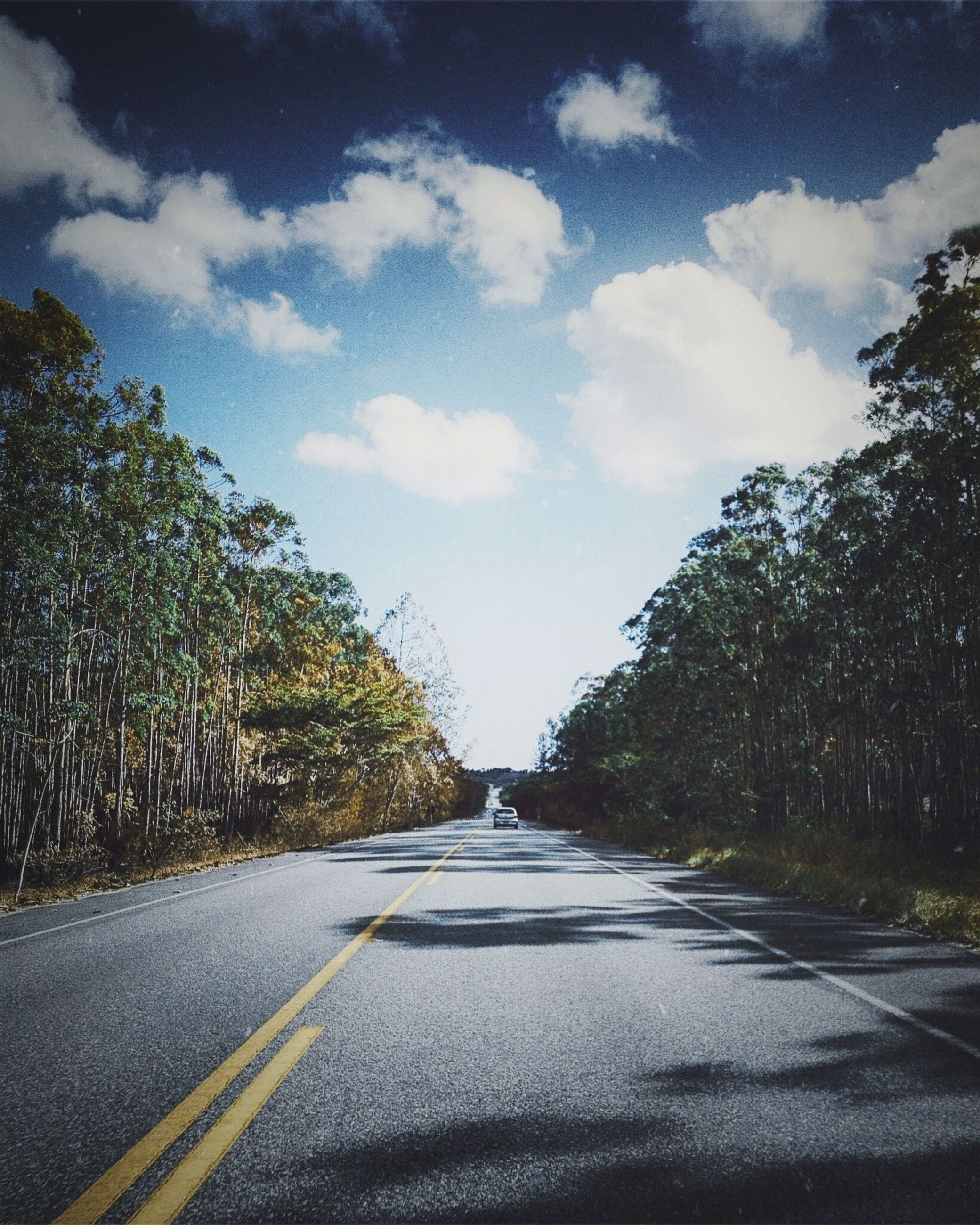 the way forward, road, transportation, road marking, diminishing perspective, vanishing point, tree, sky, asphalt, street, country road, empty road, empty, long, day, double yellow line, outdoors, cloud - sky, no people, nature