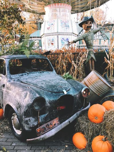 Halloween Pumpkin Autumn IPhoneography Iphoneonly Iphone6s