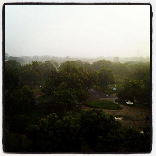 Enjoying Gandhinagar to the Fullest!! SKPS Fog Hotday ChilledNights AwesomeMornings HoodieSeason :) :)