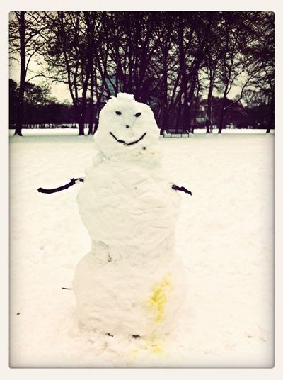 Poor Snowman .. He pisses his pant off