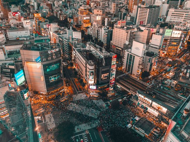 Tokyo livin' Shibuya Crossing Shibuya,Tokyo Tokyo Japan Cityscape City Cities At Night City Life Architecture High Angle View Illuminated Aerial View Light City View  Overnight Success The Architect - 2017 EyeEm Awards The Street Photographer - 2017 EyeEm Awards An Eye For Travel