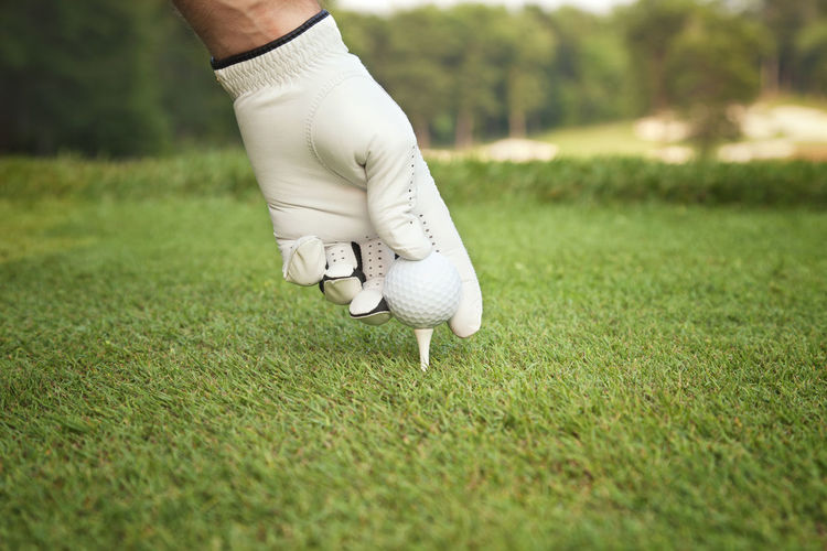 Gloves Golf Golf Ball Golf Course Golf Tees Grass Green Color Hand Low Angle View Placing Sand Trap Selective Focus Tee Box Teeing Up Trees White