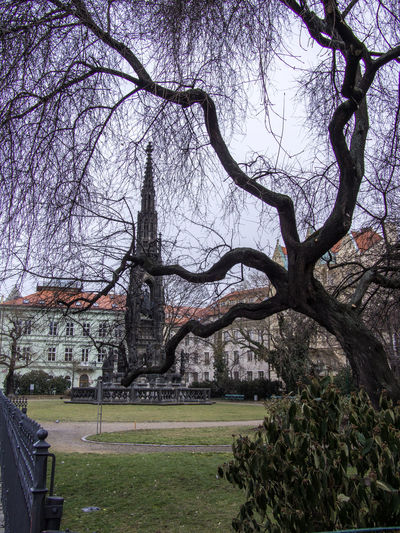 Prague Czech Republic Trip Journey Travel Tree Plant Branch Architecture Built Structure Bare Tree Building Exterior Nature Grass Sky Trunk Tree Trunk Building No People Park Land Growth Tranquility Beauty In Nature Outdoors