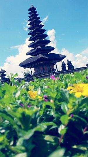 Showcase Marchin Bali,indonesia