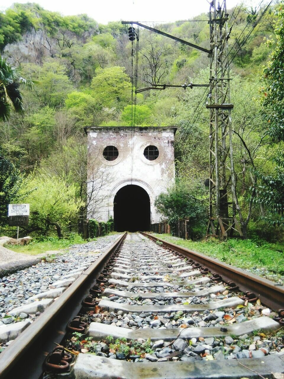 railroad track, transportation, rail transportation, bridge - man made structure, the way forward, tree, arch, built structure, day, architecture, no people, tunnel, train - vehicle, outdoors, public transportation, growth, nature