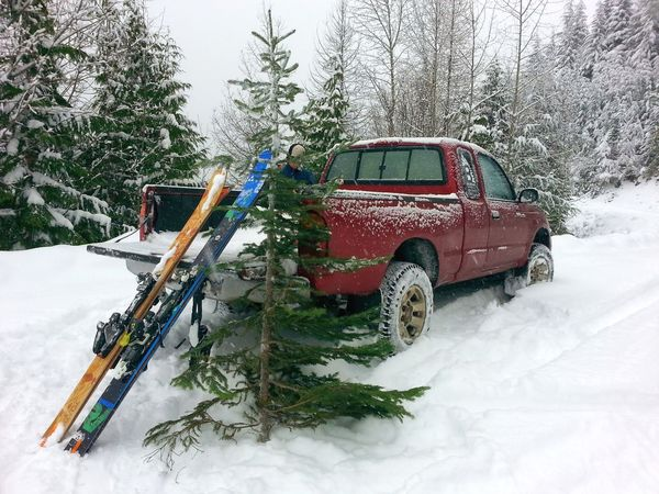 Christmas in ski country. Tree Outdoors Snow Winter No People Christmas Tree Skiing Ski Mountain Sports Mountain Winter Truck Truck Life Tacoma Pickup Truck Toyota Tacoma Toyota Truck Mountain Road Off Road Snowy Road Backcountry Skiing Christmas Time Christmas Trees Country Christmas Natural Christmas Tree