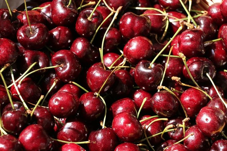 Kirschen Kirschrot Stengel Hindergrund Kirschn Sammlung Viele Kirschen Rote Kirschen Kirschen  Food And Drink Food Healthy Eating Fruit Wellbeing Freshness Red Large Group Of Objects Still Life Cherry Backgrounds No People