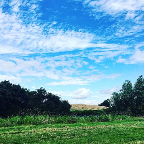 Binton England Uk Nature Beauty Beauty In Nature Clouds Trees Summer Bliss Fine Art Photography Hidden Gems  TakeoverContrast Enjoy The New Normal The Great Outdoors - 2017 EyeEm Awards An Eye For Travel