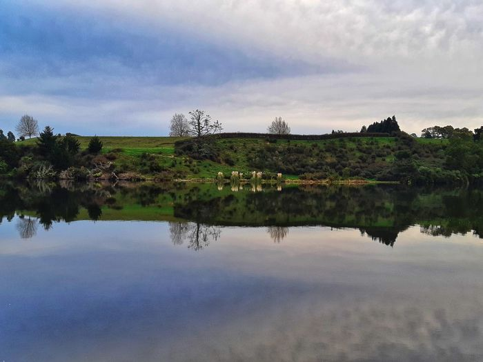 nature's mirror Selected For Partner Selected For Premium Ways Of Seeing Nature Nature_collection Landscape Landscape_lovers EyeEm Best Shots Lake View Tranquil Scene Cloudscape Outdoors Photograpghy  Hdr_Collection The Photojournalist - 2018 EyeEm Awards Exceptional Photographs Wintertime My Winter In New Zealand Getting Inspired EyeEm Nature Lover EyeEm Best Shots River View Reflection Riverside River View Water Tree Lake Reflection Sky Cloud - Sky Reflection Lake