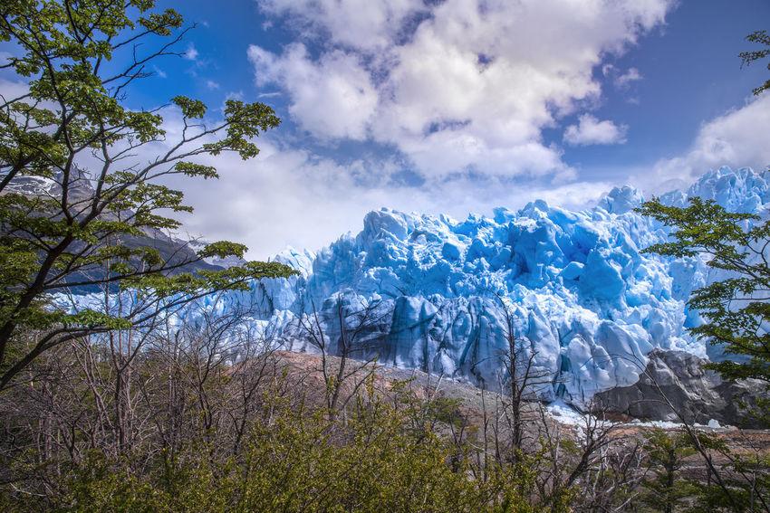 Perito Moreno Glacier in Patagonia, Argentina Perito Moreno Glacier Perito Moreno. Patagonia. Argentina. Argentina Beauty In Nature Day Glacier Glacier Background Iceberg Landscape Nature No People Outdoors Patagonia Scenics Sky Tranquil Scene Tranquility Travel Destinations Tree