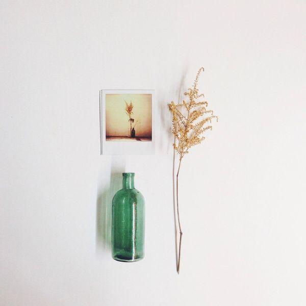 Polaroid Minimalism Flippa K Asks: What Inspires You?