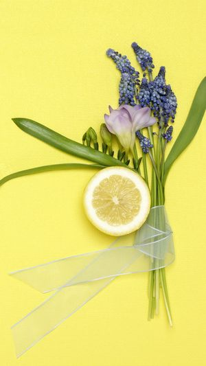 No Caption Colored Background Healthy Eating Flower No People Yellow Background Studio Shot Green Color Freshness Nature Flower Head Indoors  Food Close-up Day