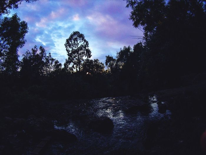 Tree Water Nature Sky Tranquil Scene Outdoors Beauty In Nature No People Tranquility Scenics River Silhouette Forest Day Growth
