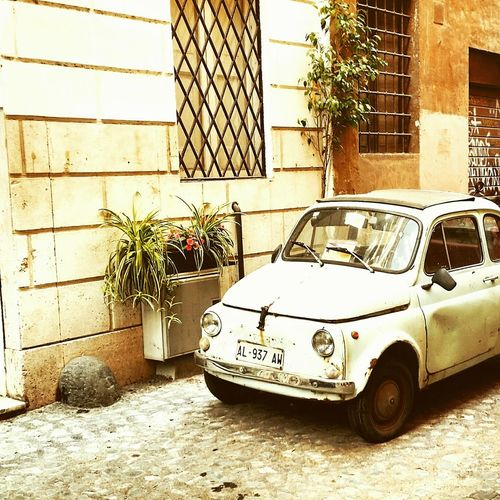 Find your Fiat 💛 Transportation Car Built Structure Outdoors TheWeekOnEyeEM EyeEm Gallery Facades And Light EyeEm Germany Nature On Your Doorstep Neighbourhood Urban Geometry Cityscape City Life Architecture Photography EyeEmNewHere Streetphotography Detached House Retro Styled Vintage Cars Fiat500 Old Car Fiat 500 Italian Style Italianstreetphotography