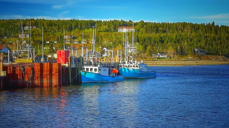 Fishing Boats, Alma, New Brunswick Canada Water Outdoors No People Moored Nautical Vessel Sea New Brunswick, Canada Fundy National Park EyeEm Nature Lover EyeEm Best Shots - Nature Springtime EyeEm Best Shots Hiking Adventures Eye4photography  Beauty In Nature Nature Fishing Boat