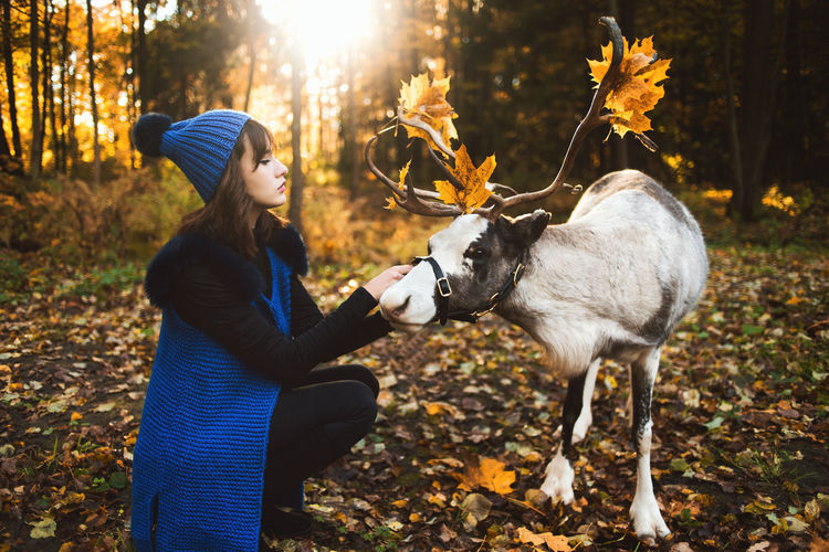 Young woman crouching by reindeer during winter