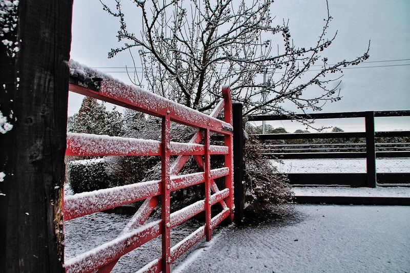 Our one day of snow in the stable yard. Tadaa Community EyeEm Nature Lover Hello World Taking Photos