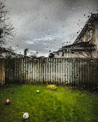 Water Drop Rain No People Wet Nature Day Rainy Season Tree RainDrop Sky Outdoors Grass Close-up Architecture Freshness