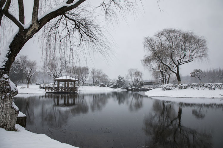 the forest park in the winter Architecture Bare Tree Beauty In Nature Branch Building Exterior Built Structure Cold Temperature Day Forest Park Lake Nature No People Outdoors Scenics Sky Snow Tranquility Tree Water Winter