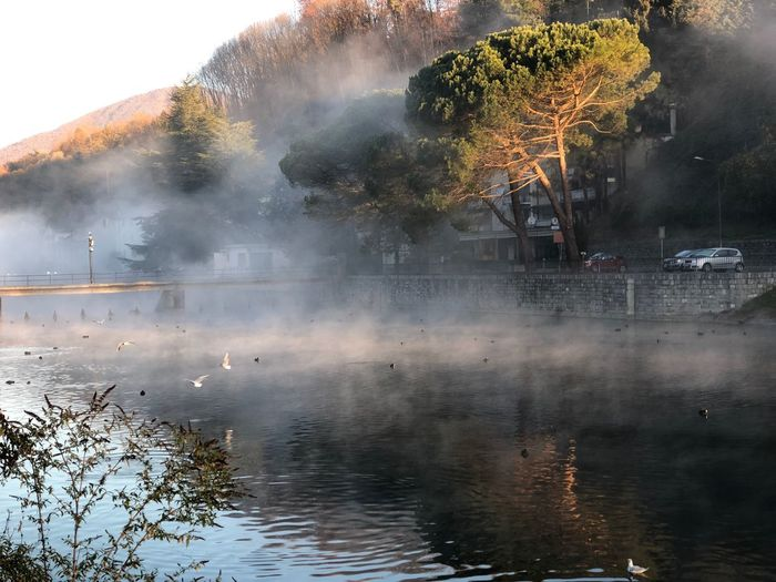 #italy #beautiful #Nature  #water #river #Morning Smoke - Physical Structure Destruction Water Steam No People Tree Outdoors Fog Nature Day