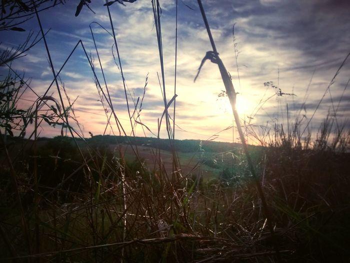 Sonnenuntergang Sunlight Clouds Hessen Burgwald