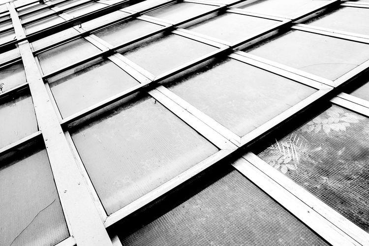 Invernadero. Boyeros, La Habana, Cuba. Arquitecture Lines Plant Square Blackandwhite Bnw Building Exterior Cuadro Discovery No People Shadow