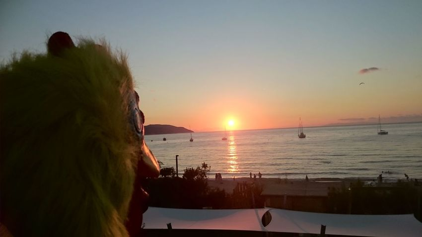 Just a 2015 summer photo of my friend with a mask watching at the sunset.. Nothing special 😂 Beach Beach Photography Sunset Blue Sky Orange Sky Summer Summertime Sand Shore Nofilter Facing The Sun Enjoy The Sun Enjoy The Sunset Elba Island  Elba Biodola Mask Chickens Sunny Day Beautiful Day Sea And Sky Seaside Seascape Blue Wave