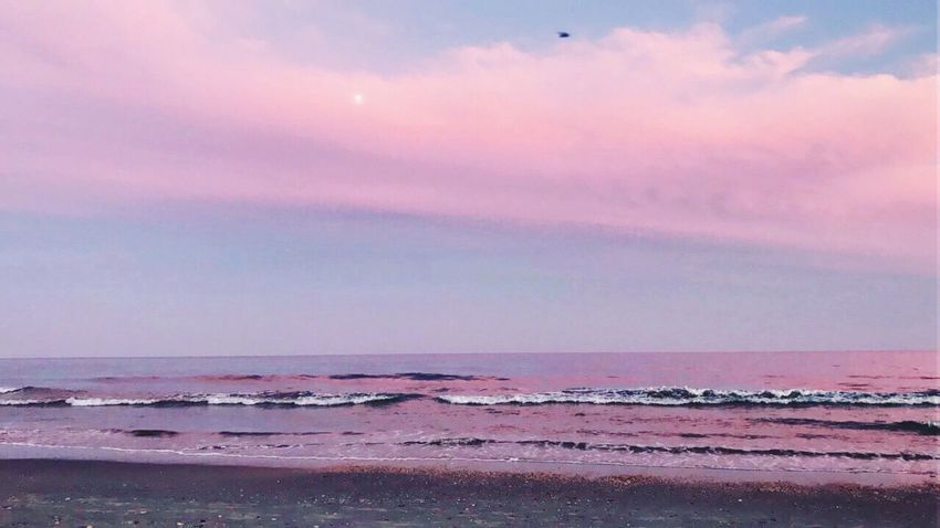 Beach Sea Scenics Beauty In Nature Water Horizon Over Water Sky Nature Tranquility Tranquil Scene Sand Sunset Idyllic Cloud - Sky Outdoors Wave No People Day Sunrise Myrtle Beach SC Moonlight Moonrise