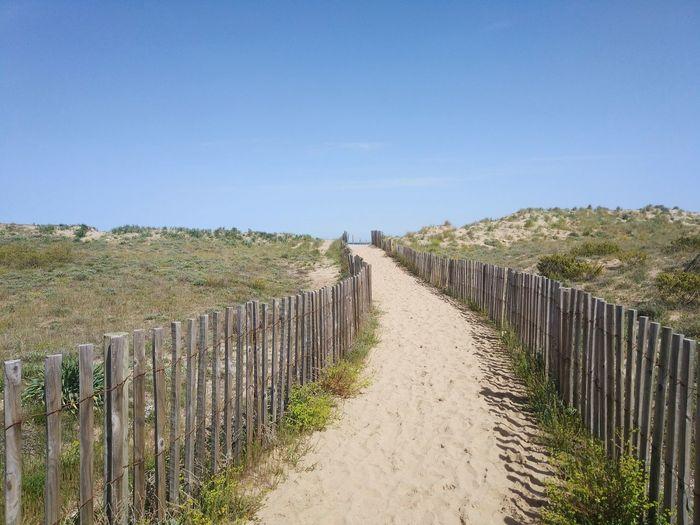 Torroellademontgri Montgri Catalunya Beach Costa Brava Girona Mas Pinell Clear Sky Tree Agriculture Protection Gate Sunny Sky